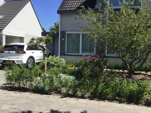 Grote foto tijdelijk onbewoond woonhuis vakantie nederland zuid